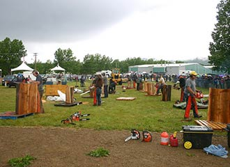 Chetwynd Annual Chainsaw Carving Championship